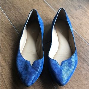 Blue flats - great for work
